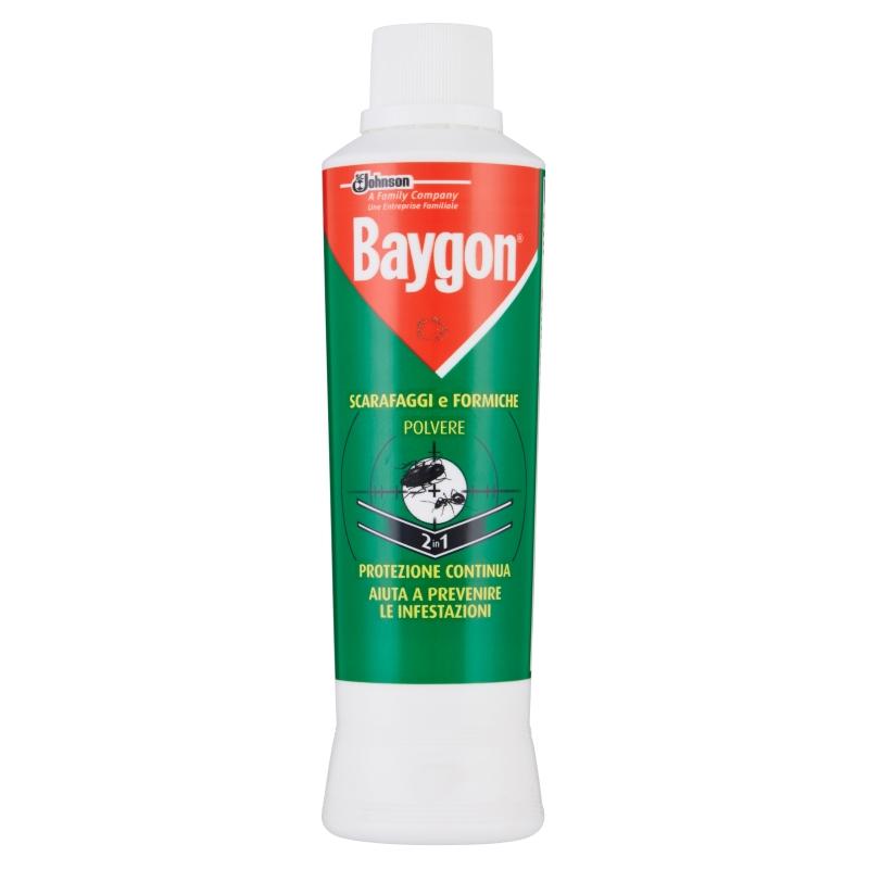 INSETTICIDA BAYGON S/F POLVERE 250G