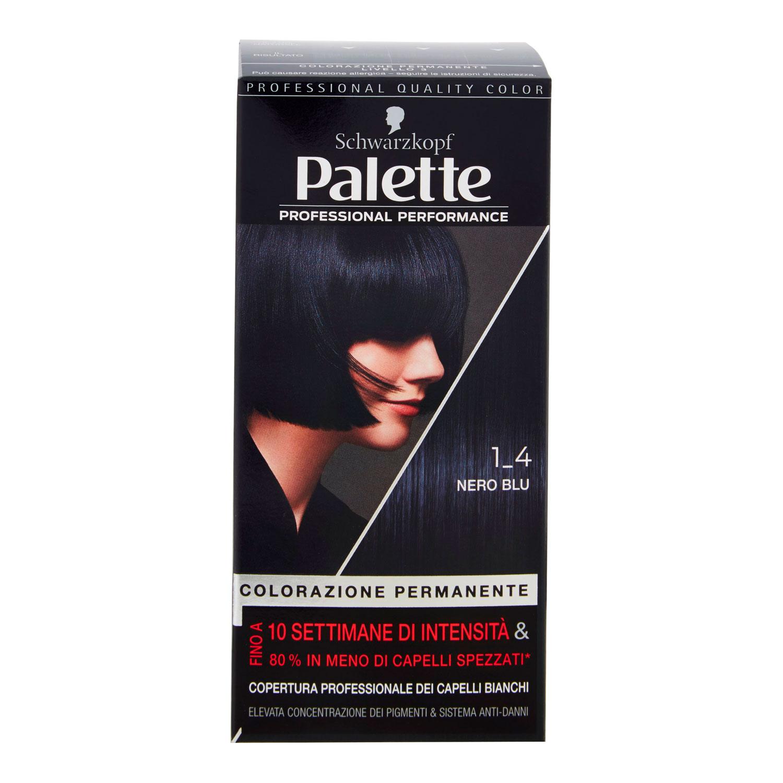 PALETTE COLORAZIONE PERMANENTE 1_4 NERO BLU