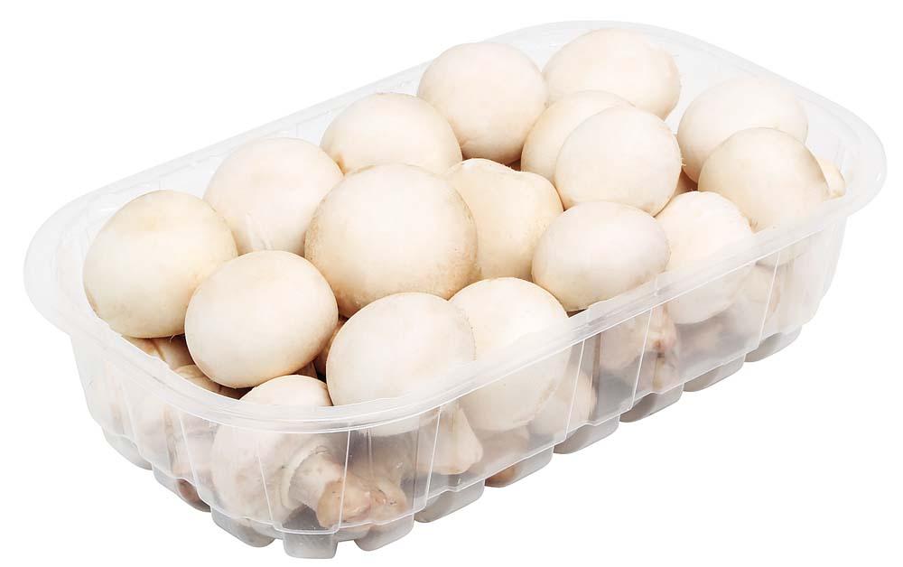 Funghi Champignon 500 g