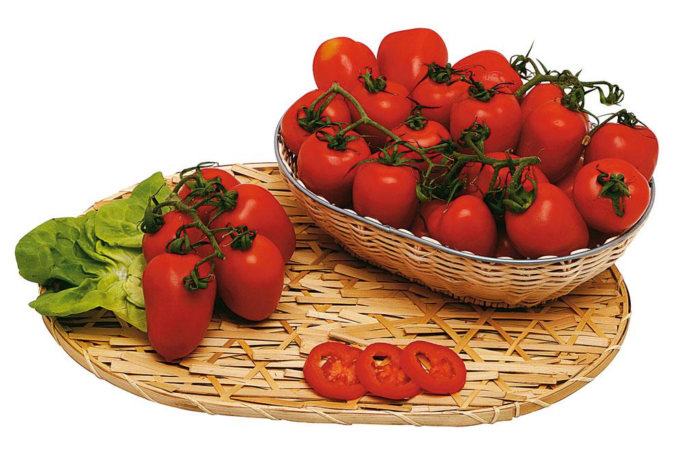 Pomodoro oblungo rosso