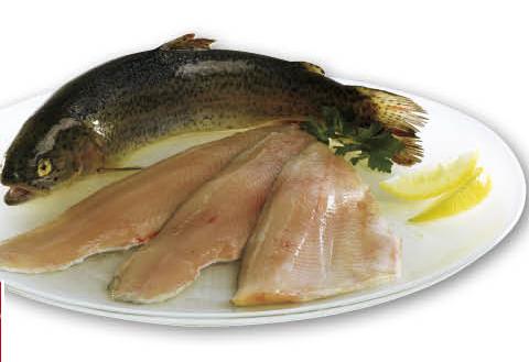 Filetto di trota iridea salmonata